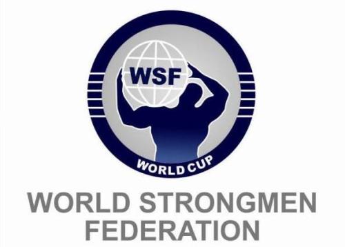 logo new wsf1
